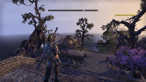 The Elder Scrolls Online, video game, landscape, sky, view, water, trees, knight, harbour